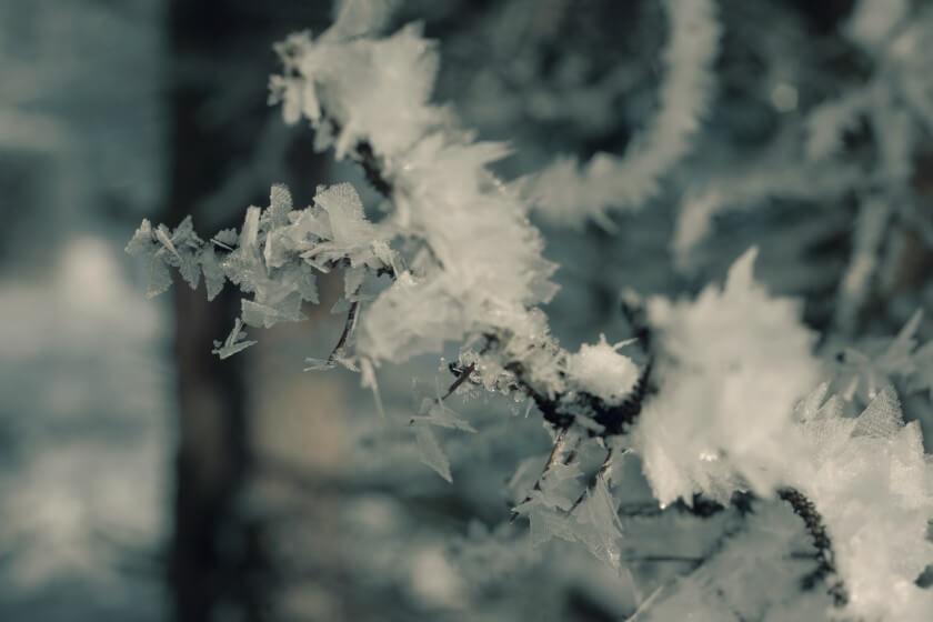 Winter-Landschaft-Detail